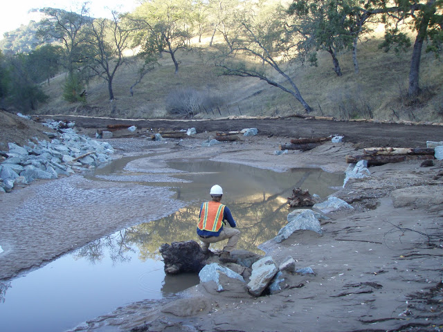 Confluence Restoration: Jacques Gulch