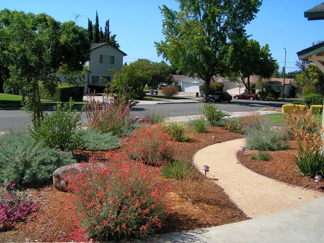 Confluence Restoration: San Jose After
