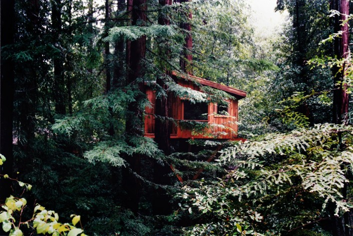 Santa Cruz County Builders: Treehouse