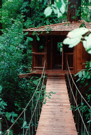 Santa Cruz County Builders: Treehouse Bridge
