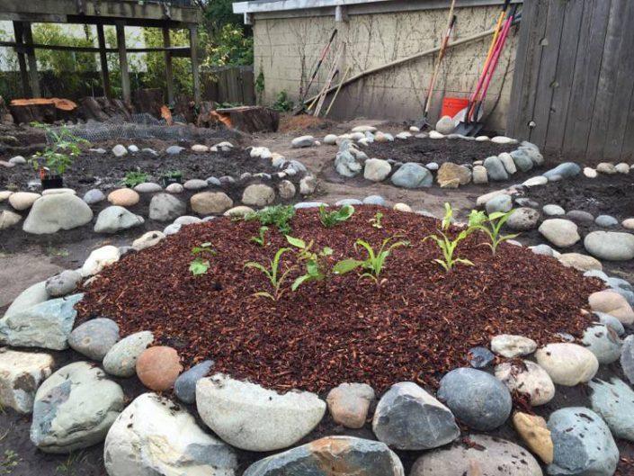 Day One Solar: Greywater Veggie Beds
