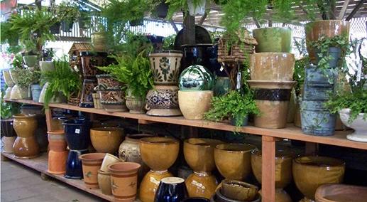 San Lorenzo Lumber: Garden Center
