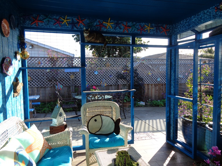 Bay Area Catios Fish Catio