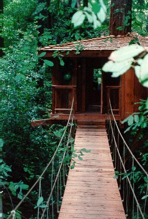 Santa Cruz County Builders: Treehouse Bridge
