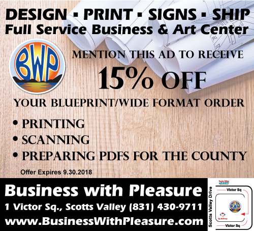 Business With Pleasure aug_ad_500x545