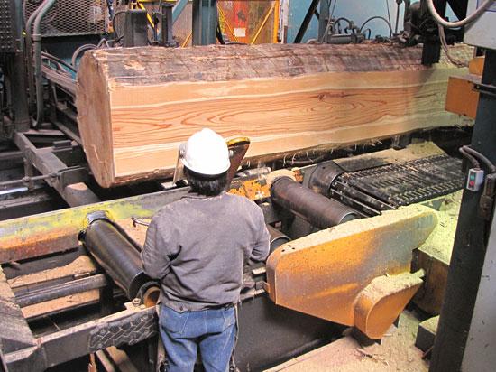 Big Creek Lumber: sawmill-worker